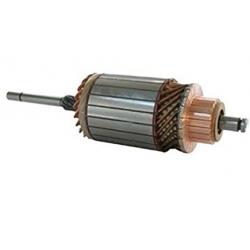 Rotor electromotor 130116